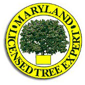 Maryland License logo